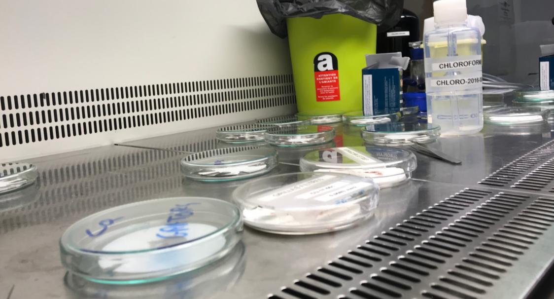 Analyse d'échantillon pour un repérage amiante avant démolition de batiment